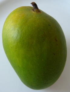 The Alphonso Mango - look how it's taunting me!